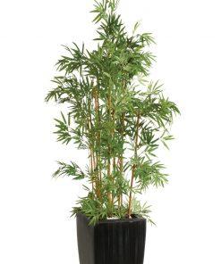 Bambusový strom