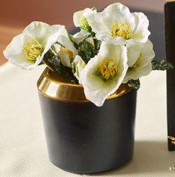 Dekoračné kvetináče