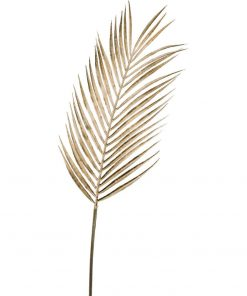 Palmový list Berna